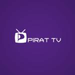 Pirat-TV med Julia Reda och Saga Nyrén